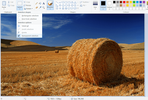 How to make a transparent background in Paint